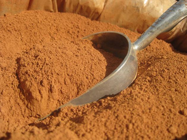 پودر کاکائو ارگانیک
