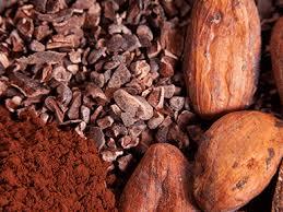 پودر کاکائو اسنو