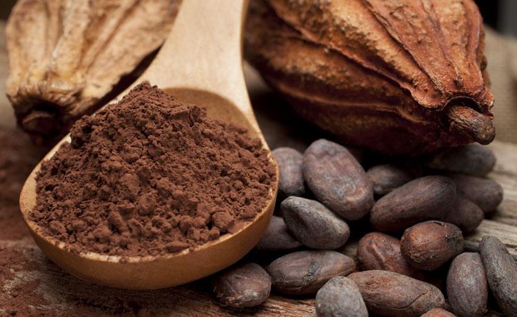 فروش پودر کاکائو خارجی