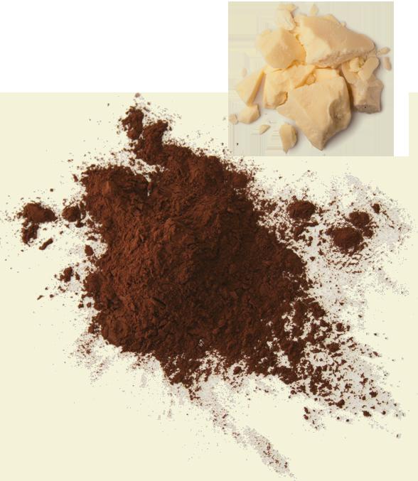 قیمت فروش پودر کاکائو مالزی