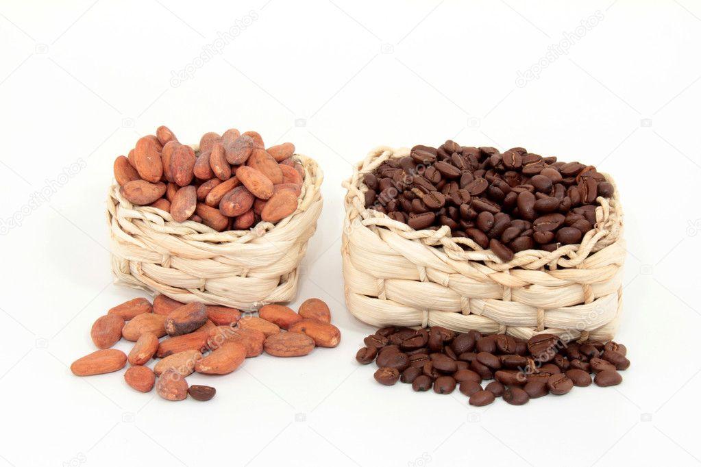 خرید پودر کاکائو مالزی
