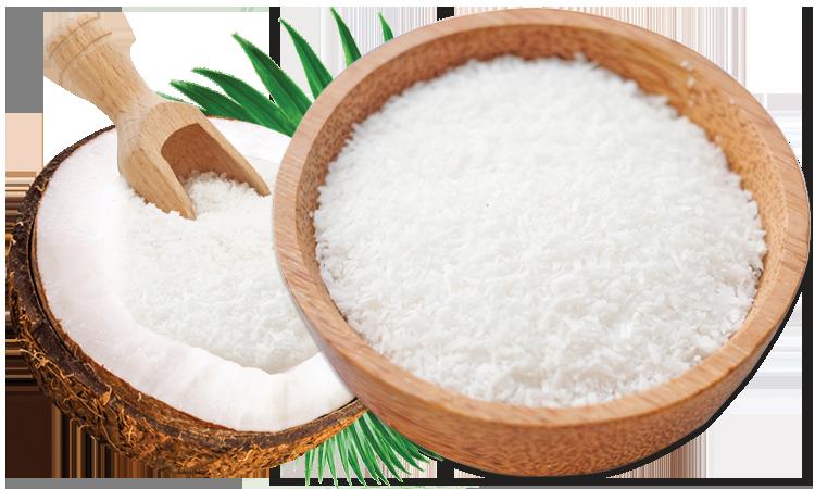توزیع گسترده پودر نارگیل Coconut Powder