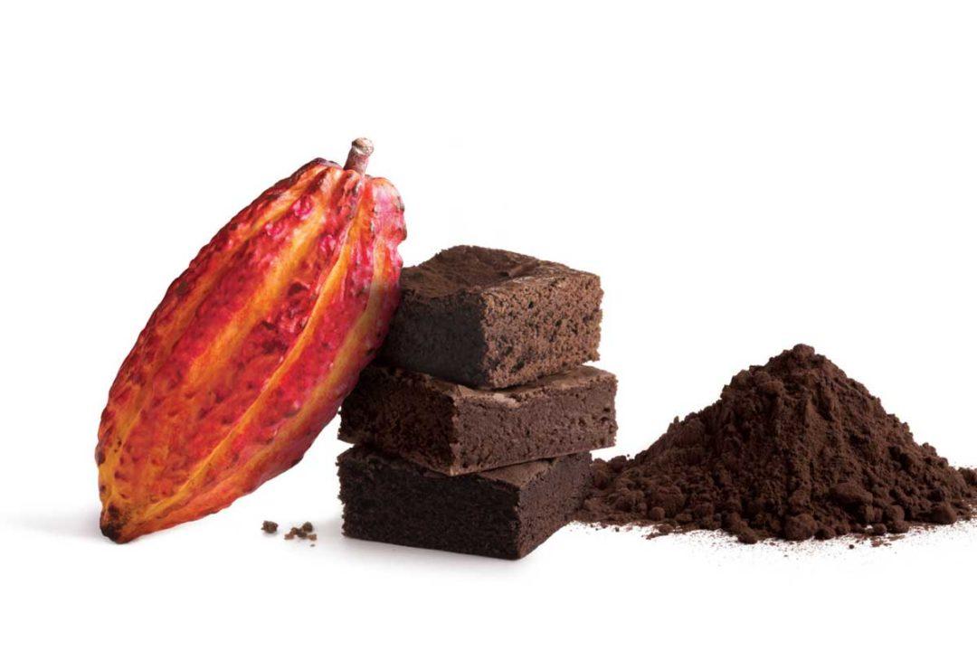 فروش پودر کاکائو آلکالایز عمده