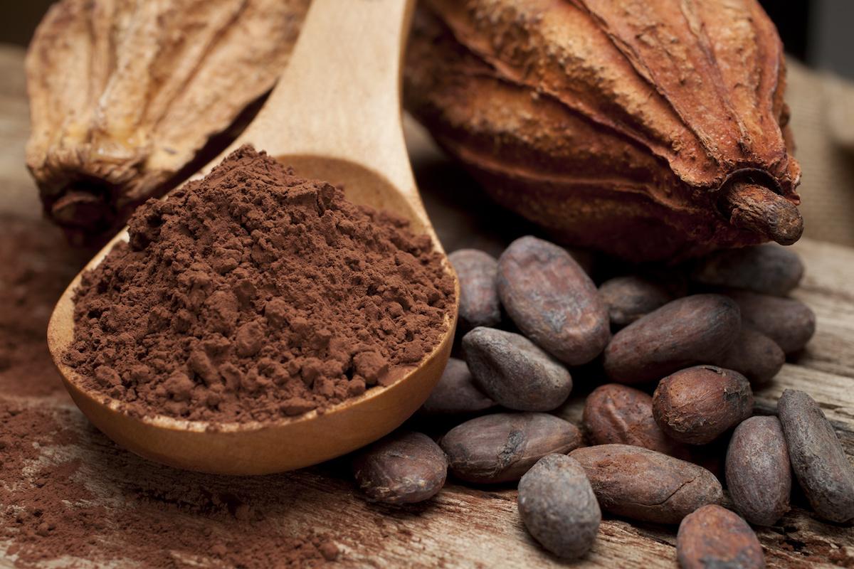 پودرهای کاکائو خارجی مرکز ما