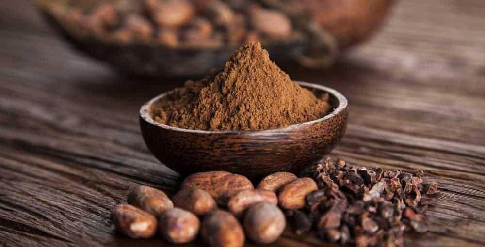 فروش عمده پودر کاکائو برای تولید مکمل ورزشی