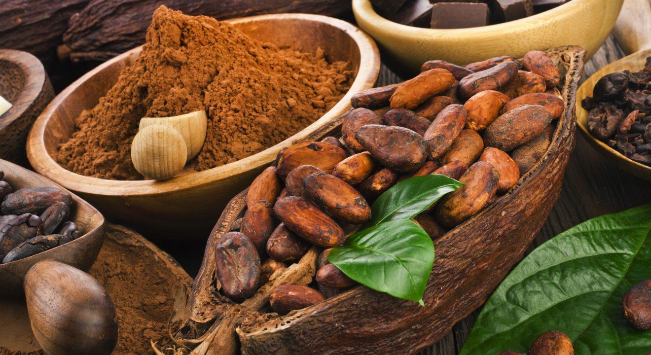 فروش پودر کاکائو کارگیل Cargill cocoa powder